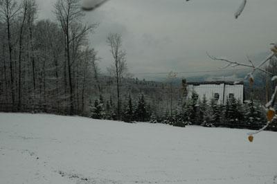 snow1-11206.jpg