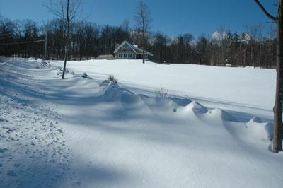 snow fallresults