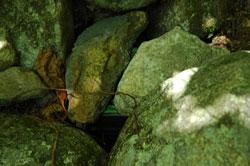 geocache under rocks