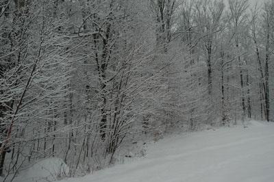 snow 12/3/07