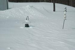 snow3thumb.jpg