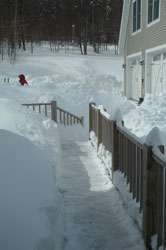 snow4thumb.jpg