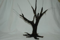 tree3thumb.jpg