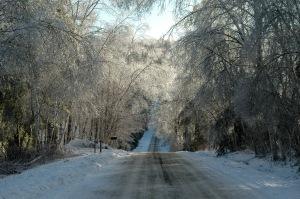 Town Farm Road