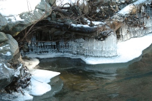 ice fringe on the Black River