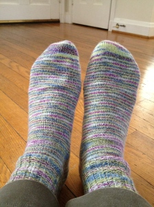 Ellen's Tofutsies socks