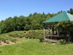 Frost Hill Farm